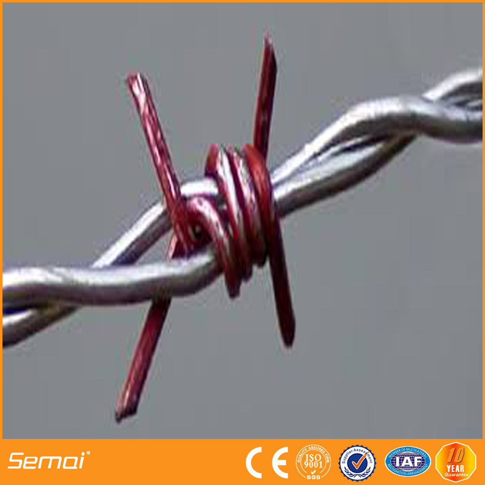 China Galvanized Barbed Wire for Sales - China Barbed Wire ...