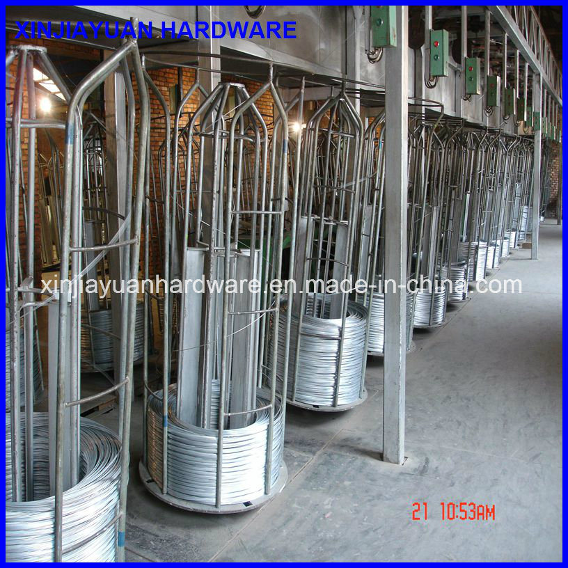 Galvanized Wire /Iron Wire /Galvanized Iron Wire for Binding pictures & photos