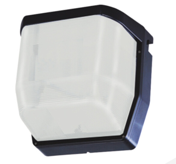 LED Wall Pack Light Used Indoors or Outdoors pictures & photos