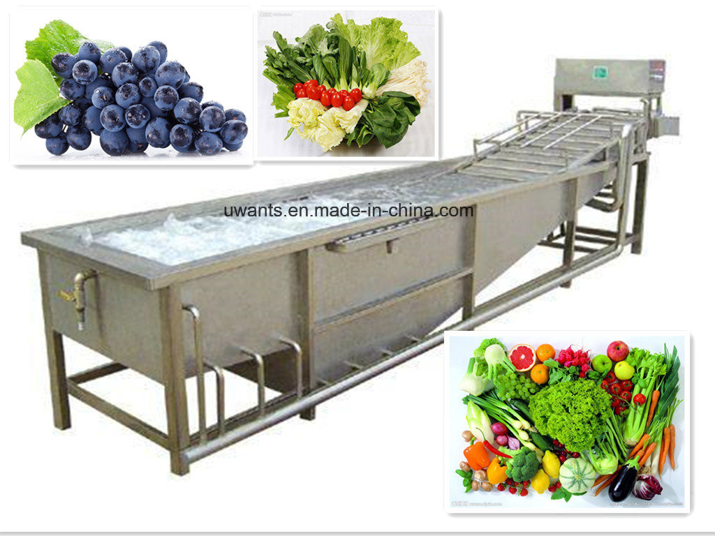 International Standard Vegetable Washing Machine pictures & photos