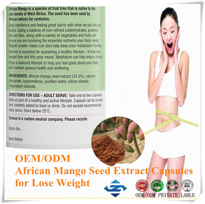 China Oem Odm African Mango Seed Extract Capsules For Lose Weight