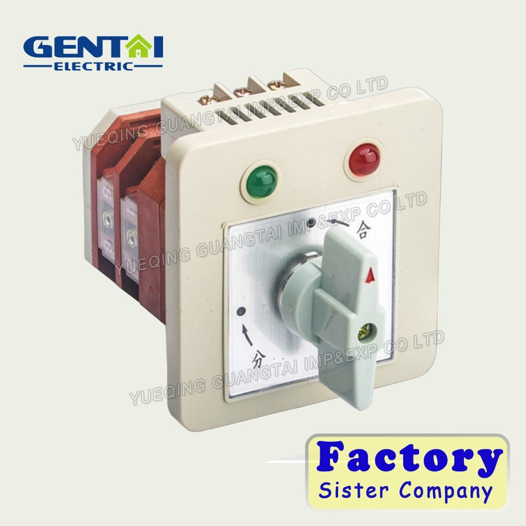 China Ce and RoHS High Quality Changeover Switch (Rotary Switch ...