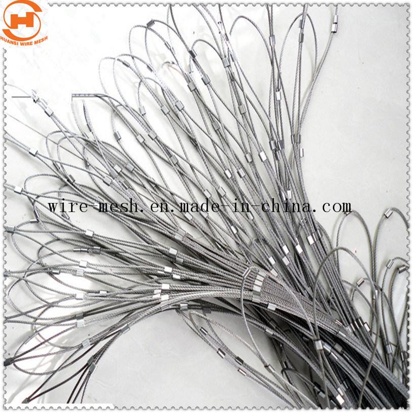 China Stainless Steel Rope Mesh 7 X 19 and 7 X 7 - China Rope Mesh ...