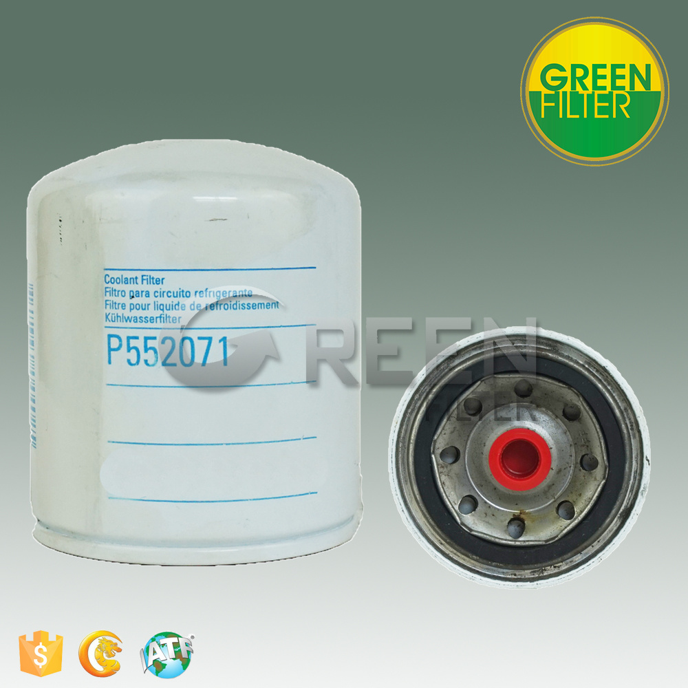 Hot Sale Fuel Filter for Truck (P552071)