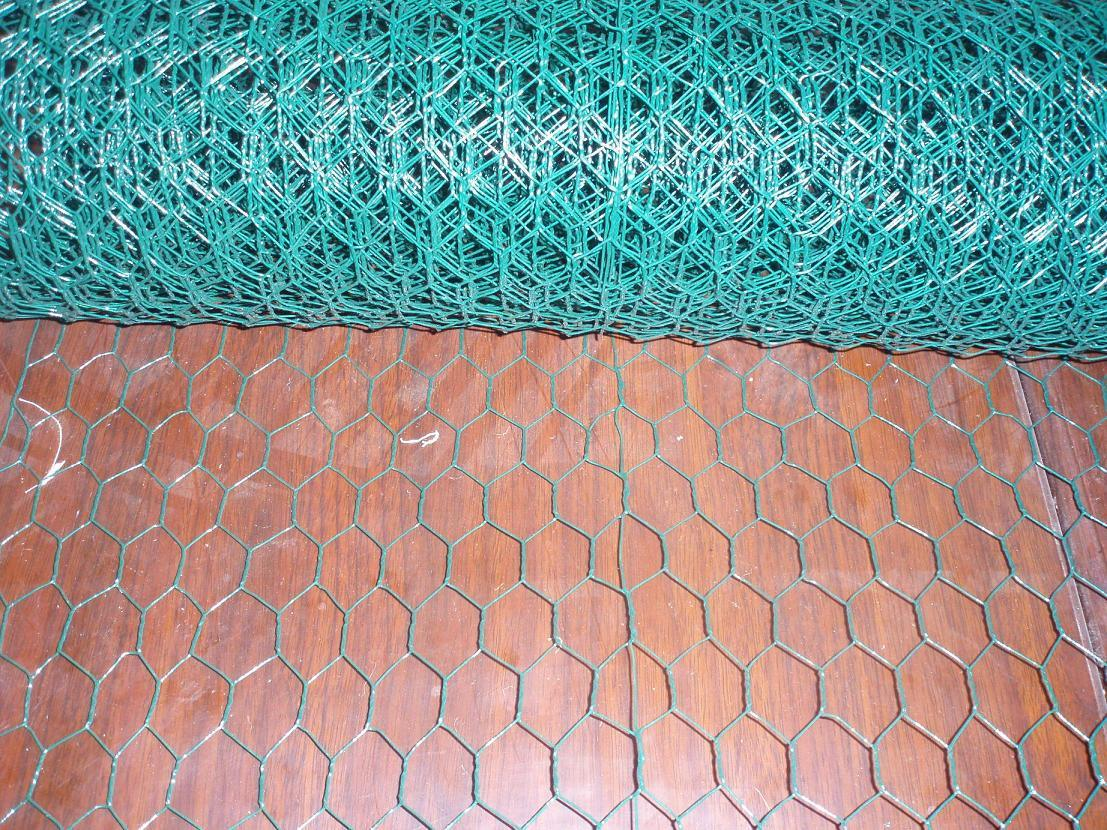 China High Quality PVC Coated Hexagonal Wire Netting Good Price ...