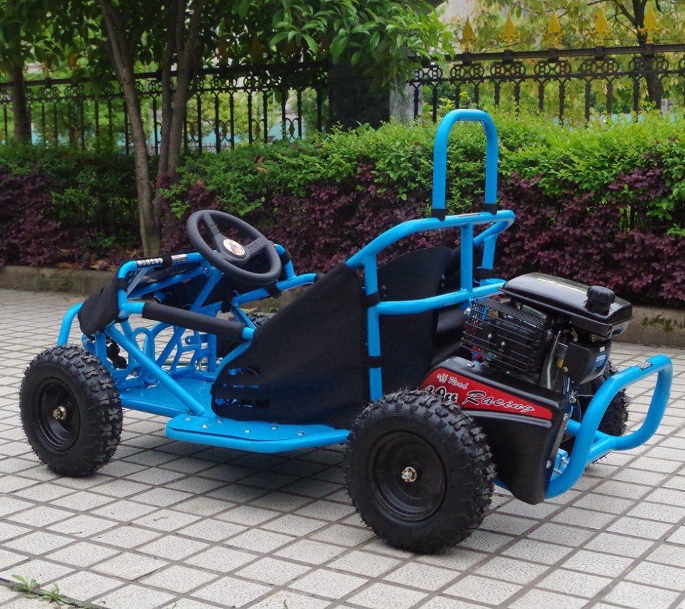 China Newest Developed Gas 80cc Mini Go Kart with EPA and Ce - China ...