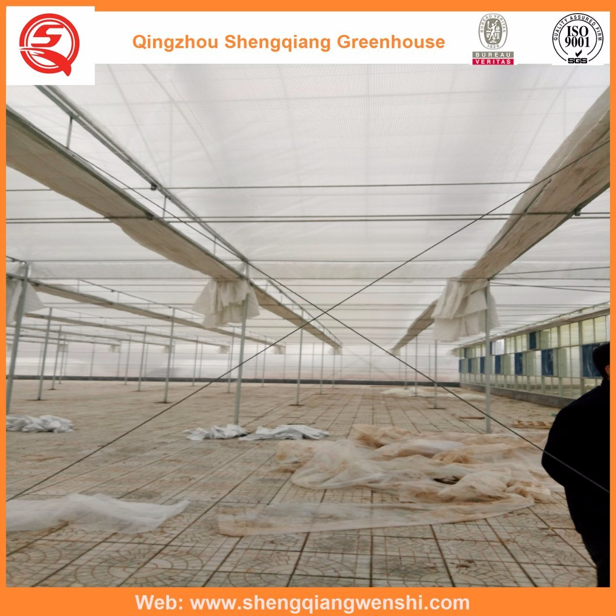 Agriculture Multi Span PC Sheet Greenhouse for Planting pictures & photos