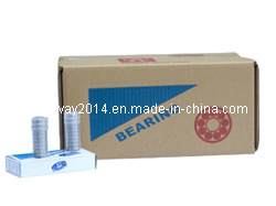 Thin-Walled Deep Groove Ball Bearing (6801)