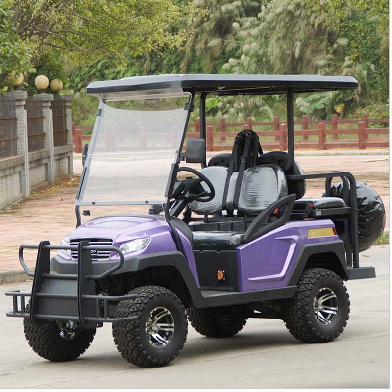 China 48V Battery Power Electric Golf Cart for Sale pictures & photos