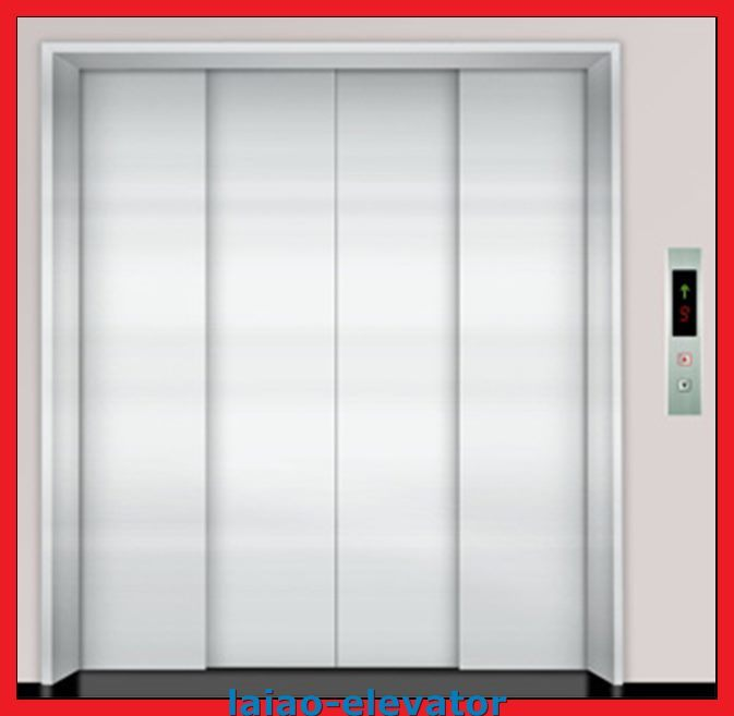 Double Entrance Cargo Elevator Lift with Iron Sheet-Standard Controller Box