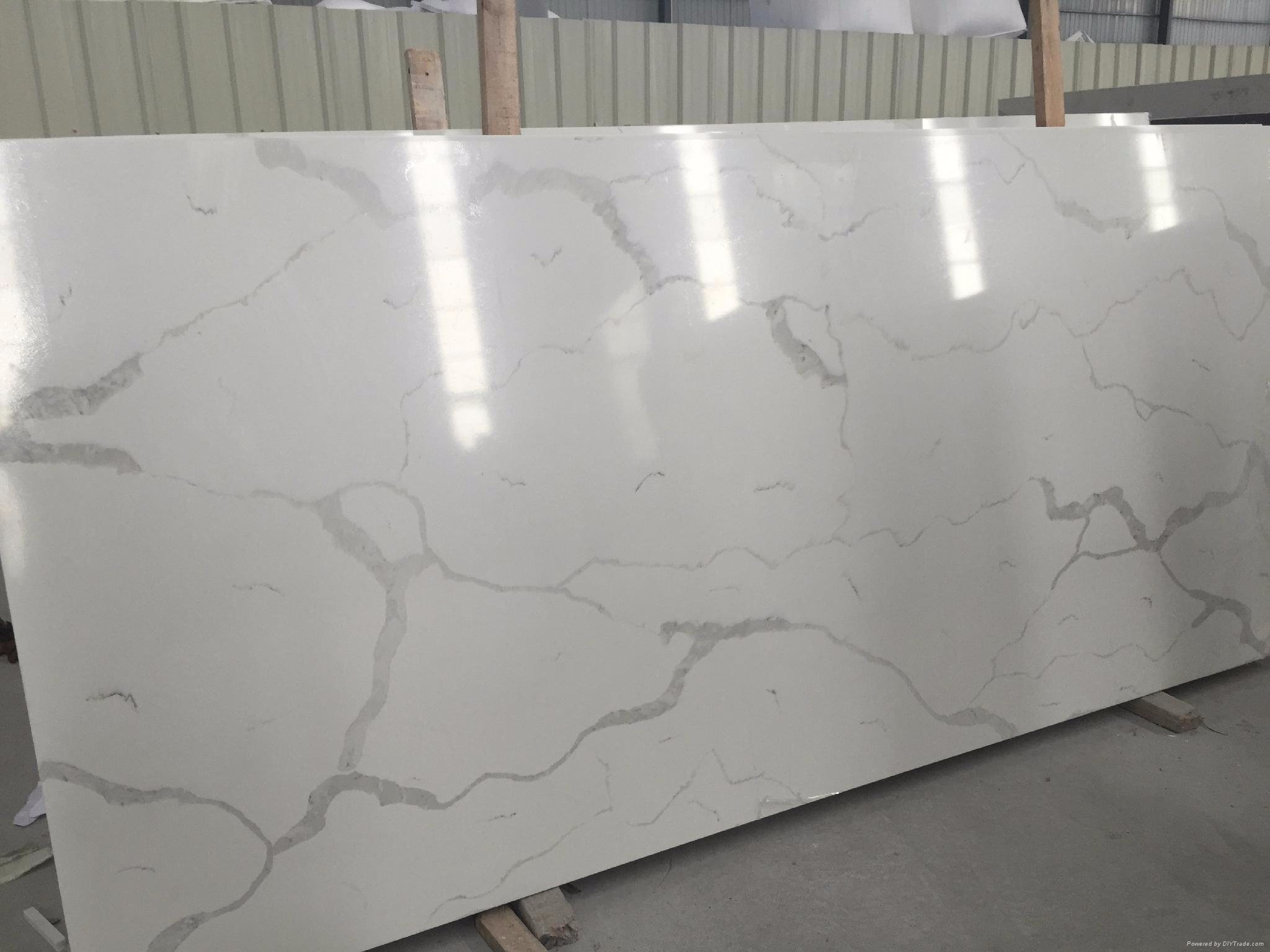 China Marble Look Carrara White Carrera
