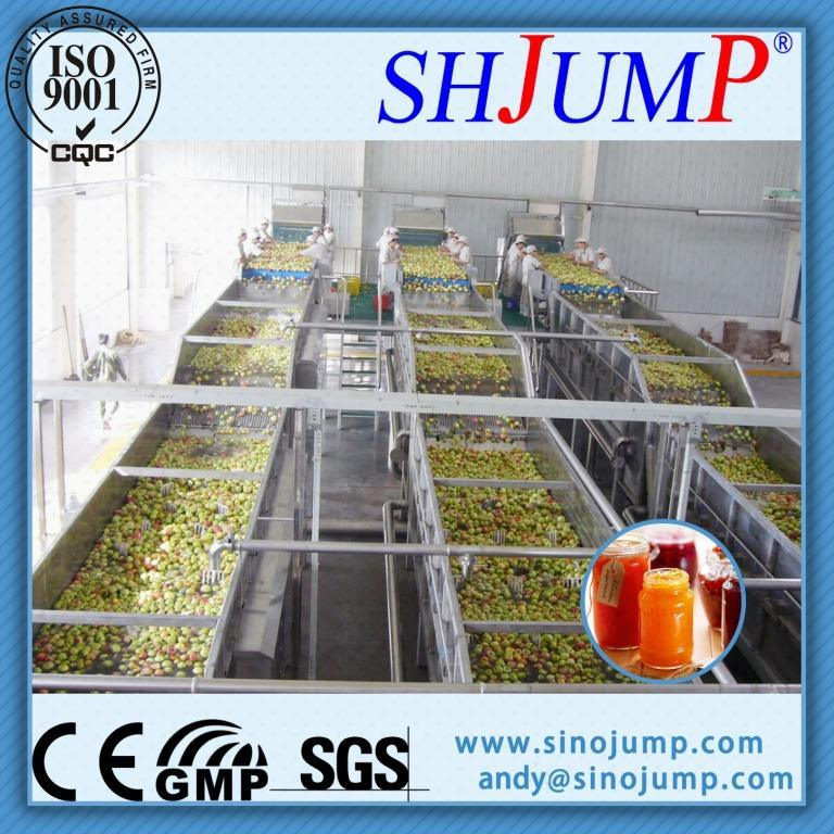 Full Automatic Fruit Puree Processing Machine/Fruit Puree Production Line