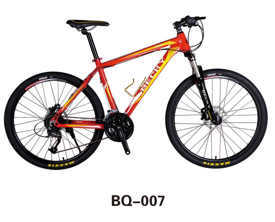 China Bq Mountain Bike Carbon Fiber Bicycle - China Electric ...
