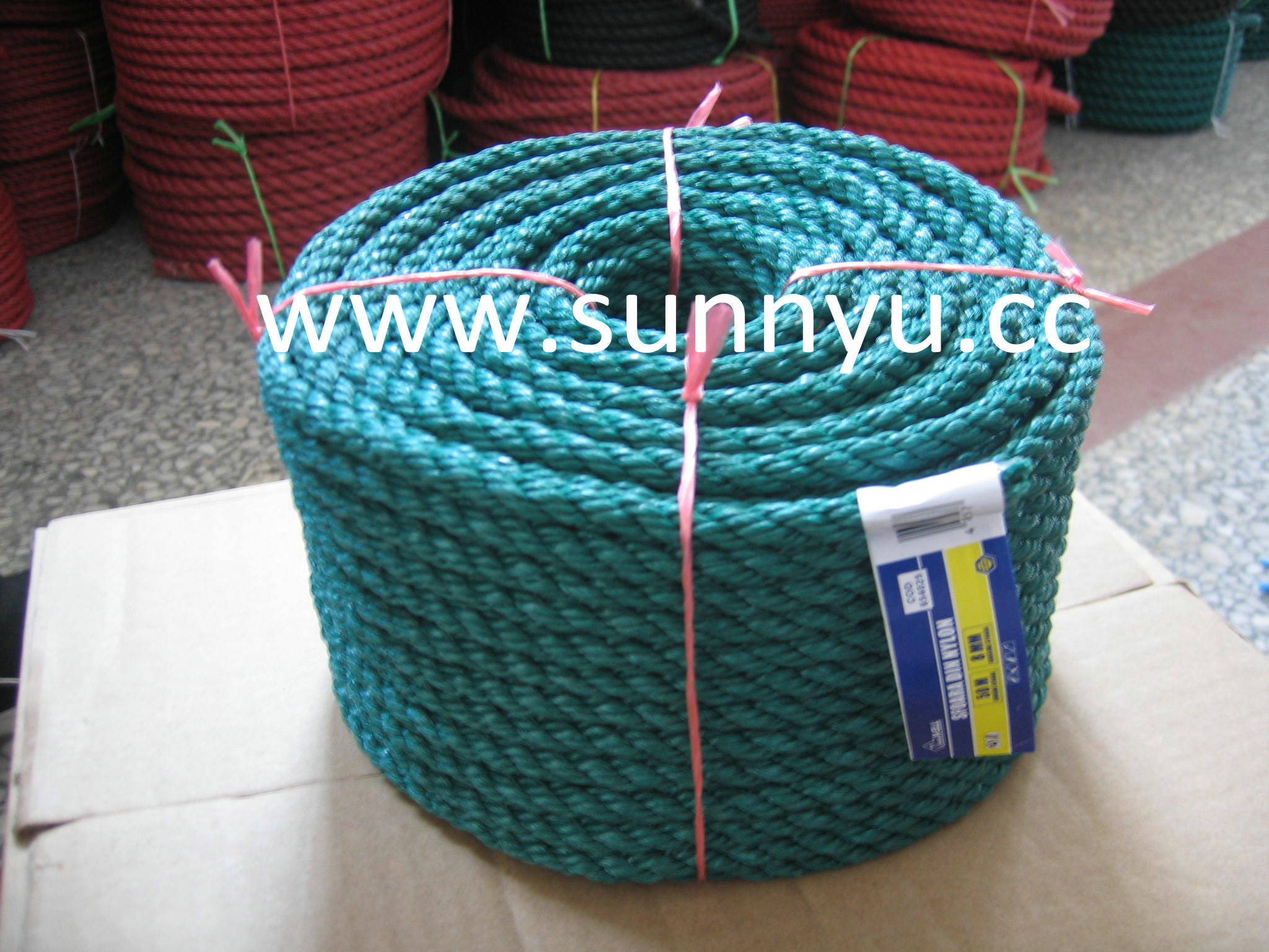 China Professional Factory Flat PE Cord - China PE Cord, Flat PE Cord
