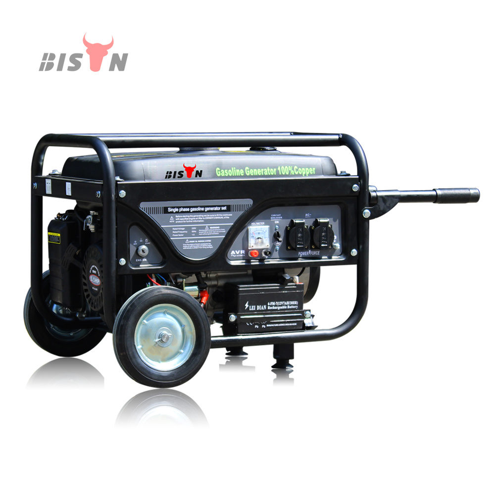 Bison China New Popular Bs3000e 2500w 25kw Ohv Structure Portable Phase Control Air Cooled Gasoline 25kva Generator Set Self Running