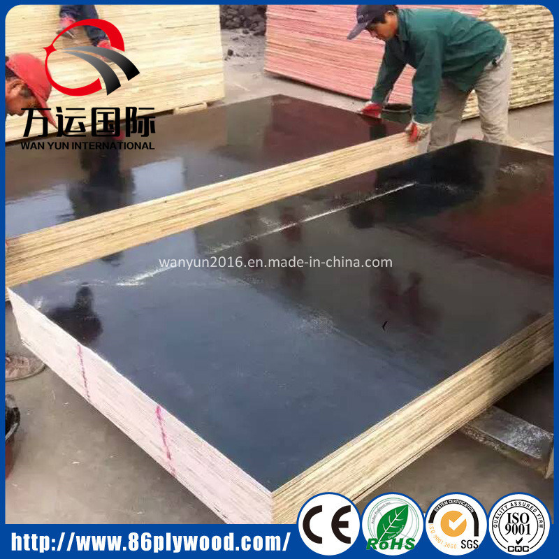 12mm 14mm 18mm Exterior Waterproof Film Face Plywood Poplar Core