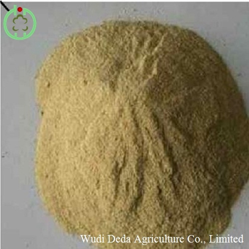 Yeast Feed Additives Competitive Price