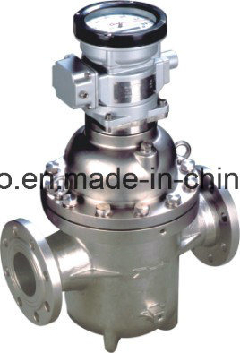 Mechanical Bi Rotor Flowmeter (LSZ) pictures & photos