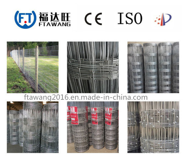 China Sheep Cattle Horse Welded Wire Mesh Fence/Fence Panel - China ...