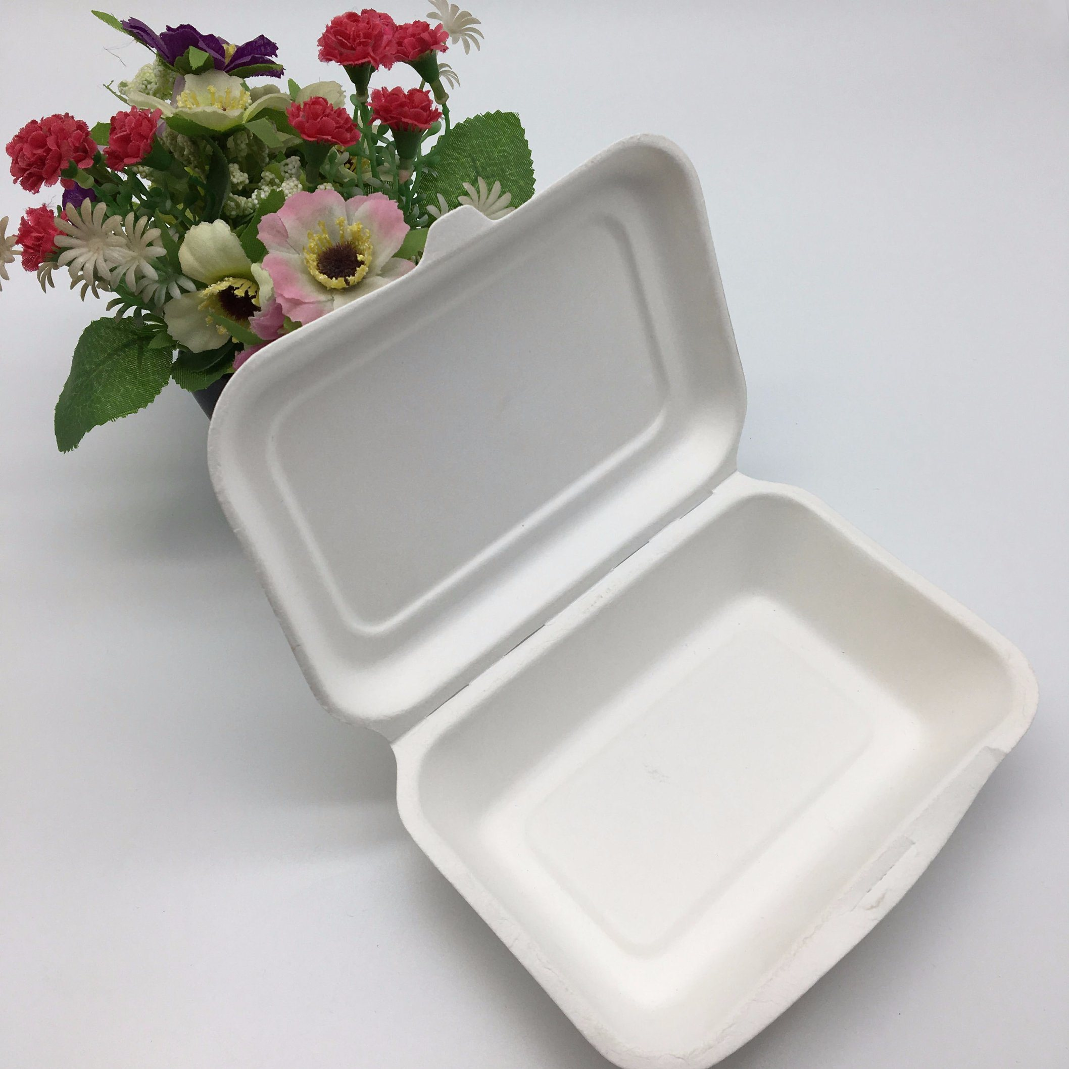 China Disposable Biodegradable Microwave Sugarcane Bagasse Molded