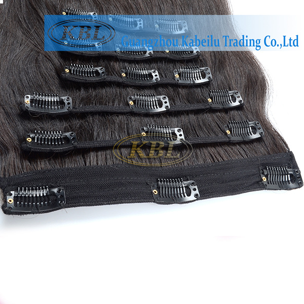 Brazilian Clip-in Hair, Human Hair Extension pictures & photos