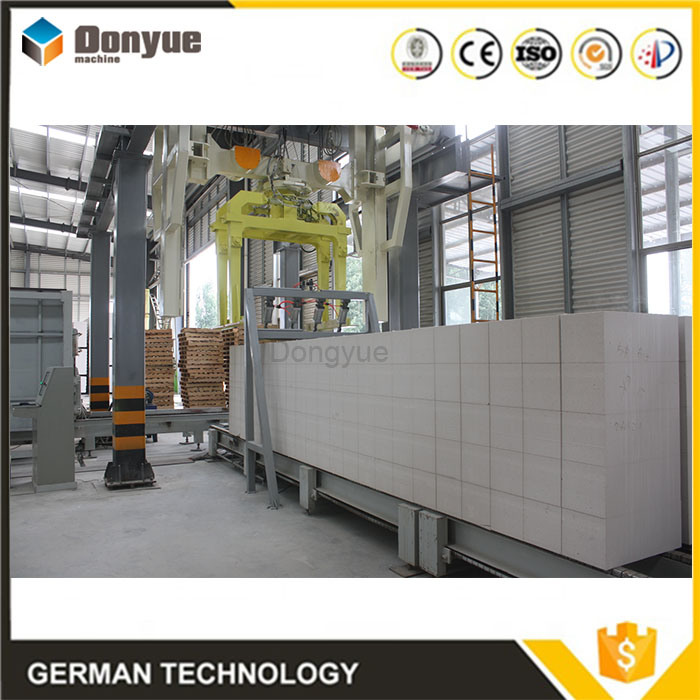 China Autoclaved Aerated Concrete Blocks Production Line