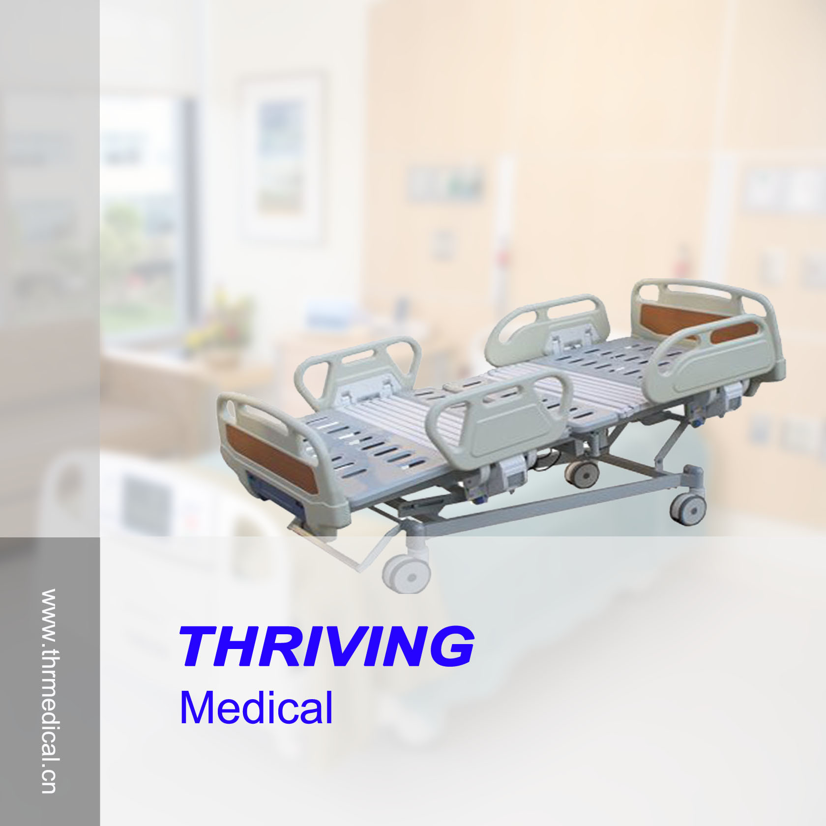 5-Function Electric Medical Bed (THR-EB525) pictures & photos