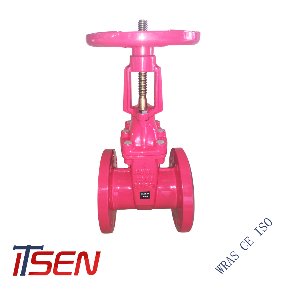 China Cast / Ductile Iron Resilient Wedge Gate Valves of All