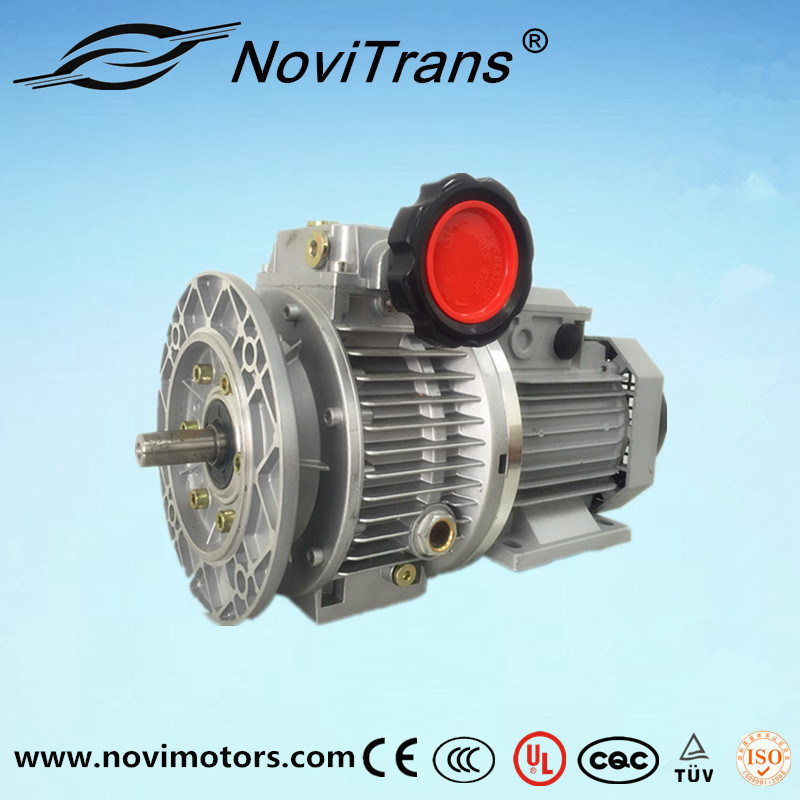 Three Phase Permanent Magnet Synchronous Motor Flexible Motors with Speed Governor (YFM-132/G)
