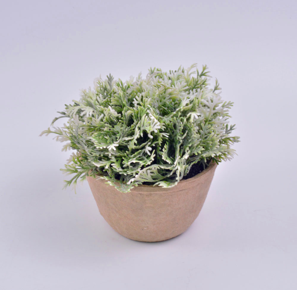 China New Style Plants In Paper Mache Pot For Office Decoration
