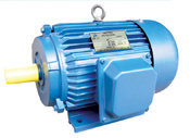 Le2 ISO9001 Y Series Three Phase Motor