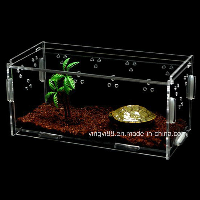 China 2018 New Design Acrylic Reptile Display Case China Acrylic