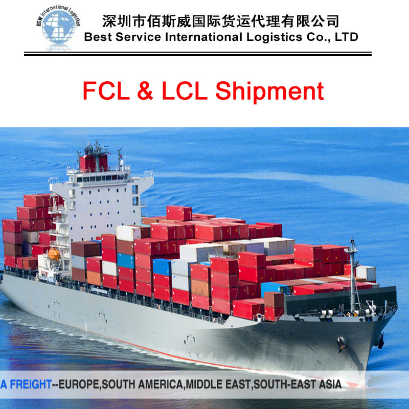Ocean Transportation (Sea freight FCL&LCL) to South Africa - Shipping