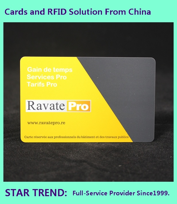 Plastic Gift Card in Credit Card Size with Perfect Printing Shanghai Star Trend pictures & photos