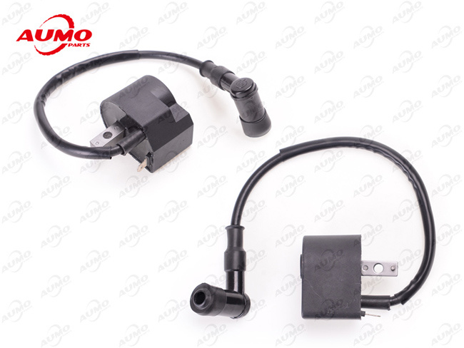 China Motorcycle Ignition Coil for D1e41qmb Scooter Parts Photos