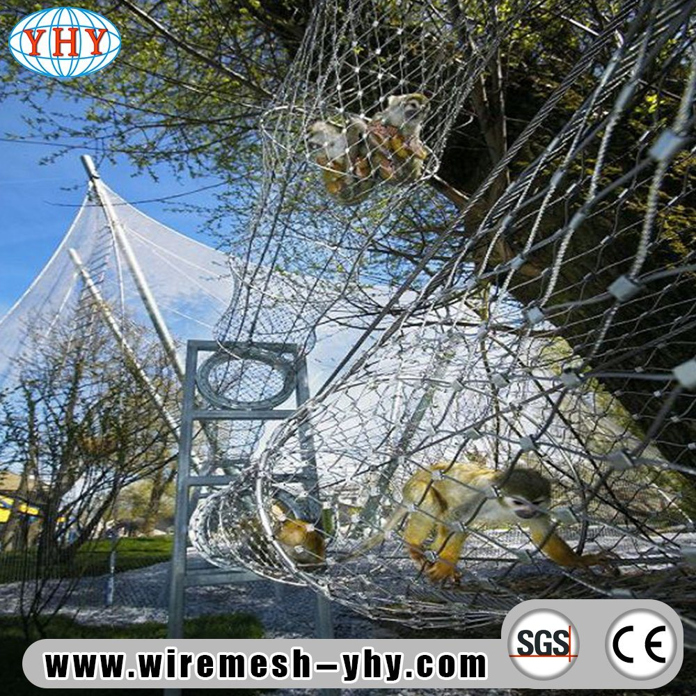 China AISI 316 Stainless Steel Decor Wire Rope. - China Wire Mesh ...