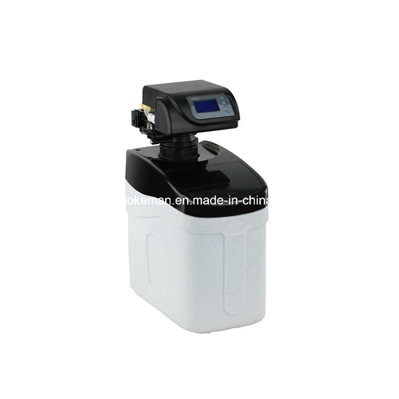 0.5 Ton Per Hour Water Softener with Automatic Valve pictures & photos