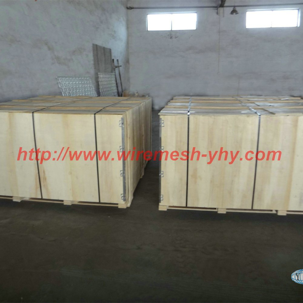 China 1.8m Green or Black PVC Coated 3 V Bending Welded Wire Mesh ...