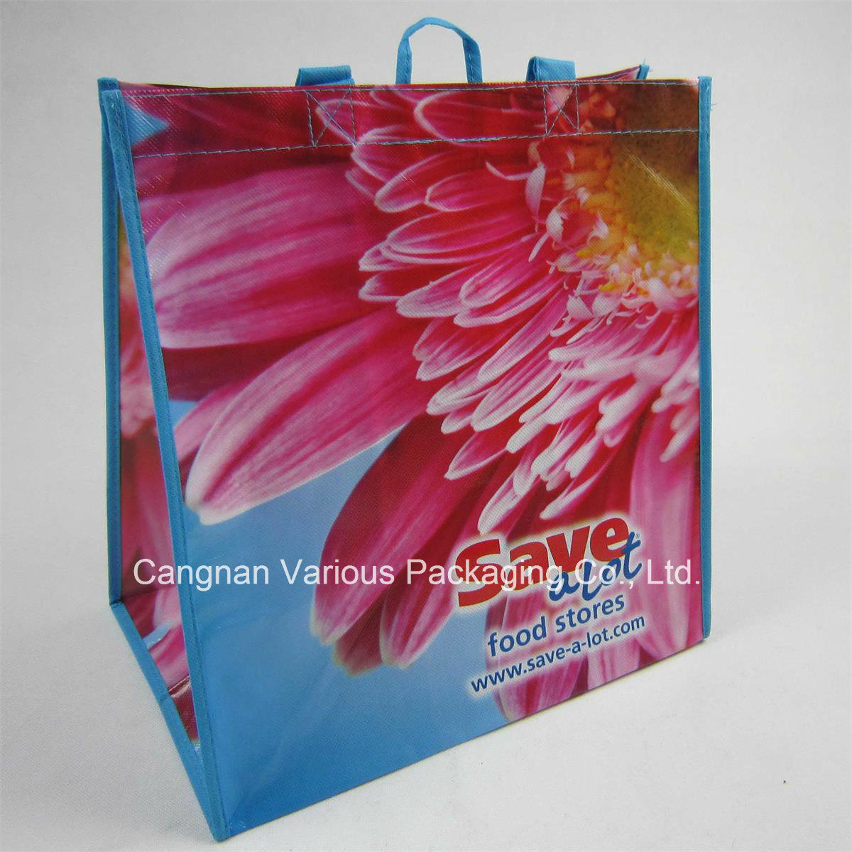 Laminated Non Woven Bag, Recycled Bag, Promotional Bag, Cnavas Bag, Cotton Tote Bag, Shopping Bag (MX-BG1065)