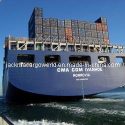China Sea Shipment From Shenzhen/Guangzhou/Hk/Pearl River Ports to