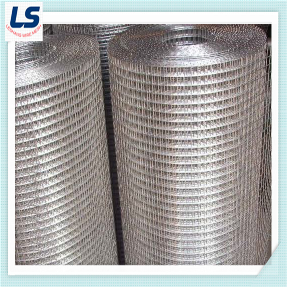 China Stainless Steel Welded Wire Mesh 1/4\