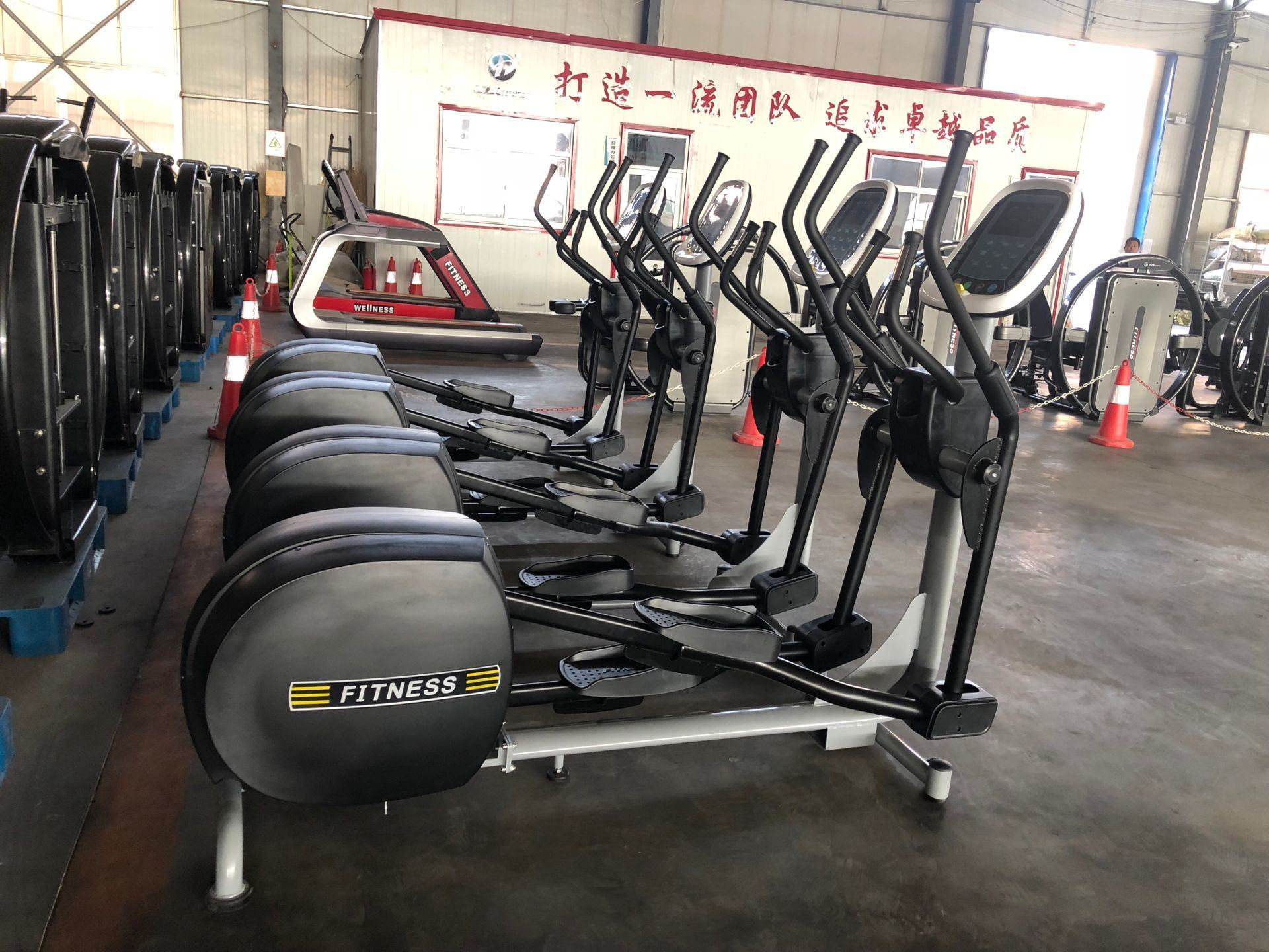 China Professional High Quality Fitness