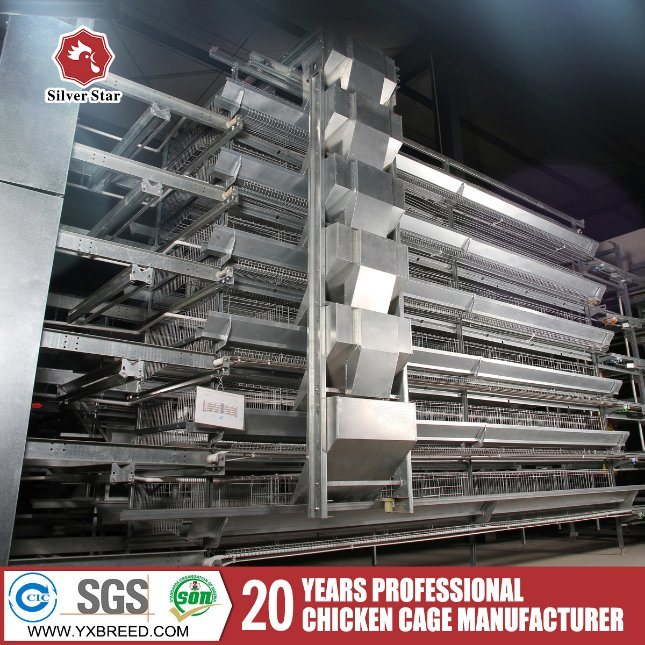 Complete Parts Farming Baby Layer Broiler Chicken Cage (H-4L120)