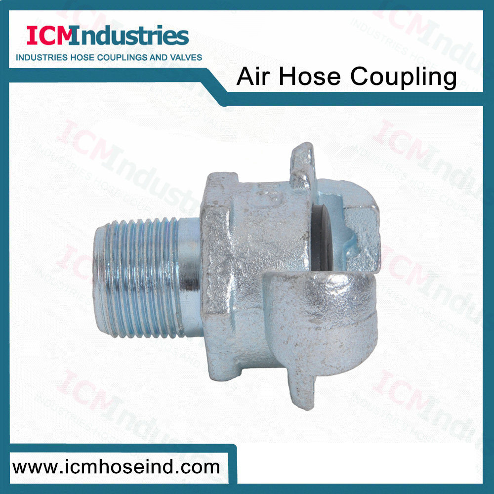 China Australia Quick Connect Air Fitting Type a Male End Air Hose