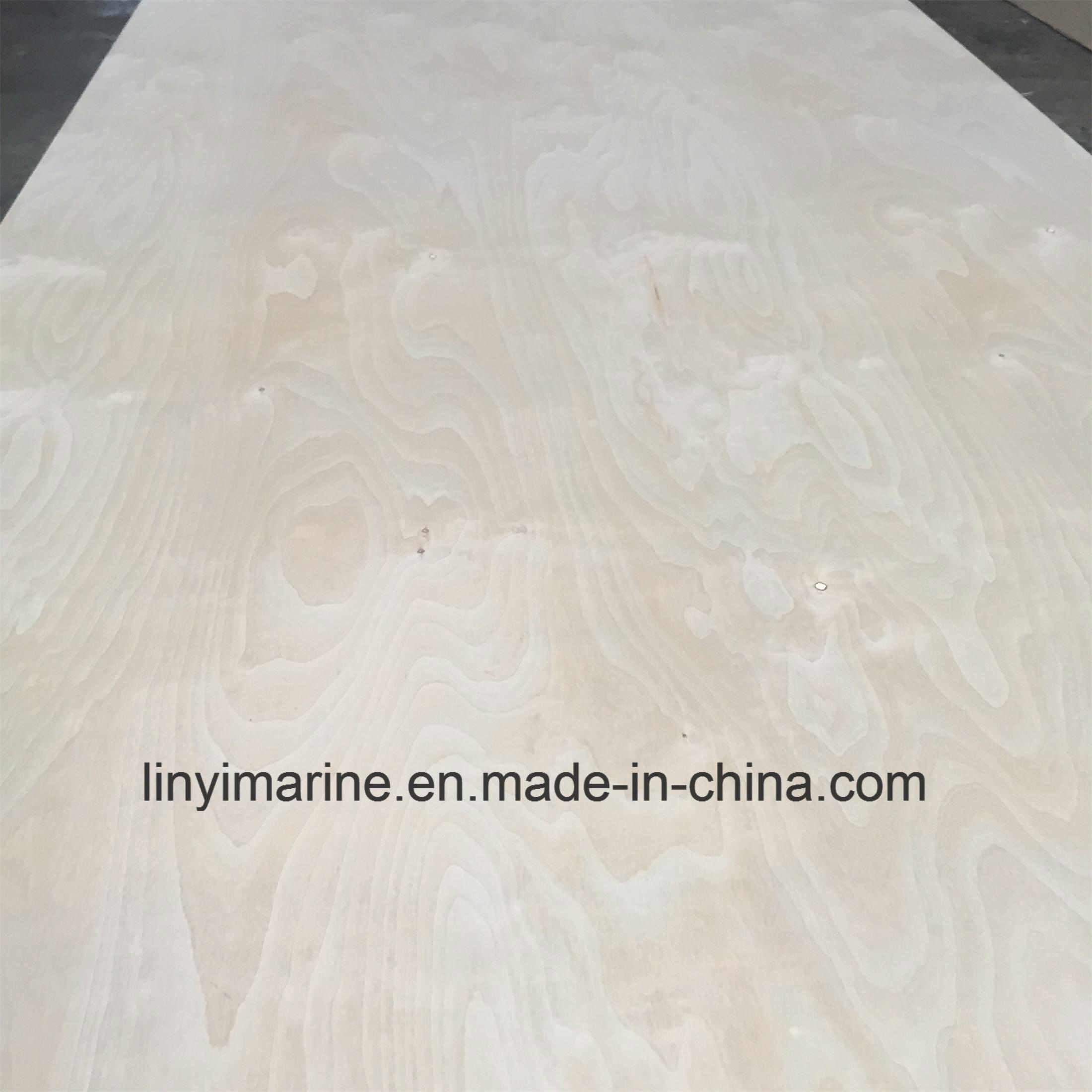 Russia Birch Plywood B/Cp Grade Poplar Core pictures & photos