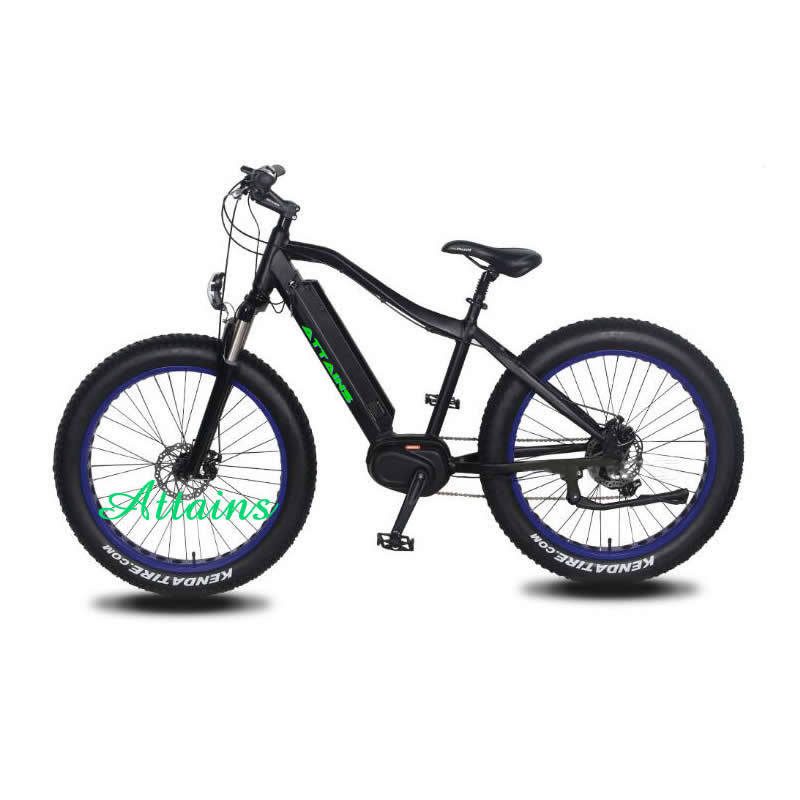 26′′ Alloy Cheap Fat Tire Snow Beach Mountain Electric Bike/Bycicles with Best Quality