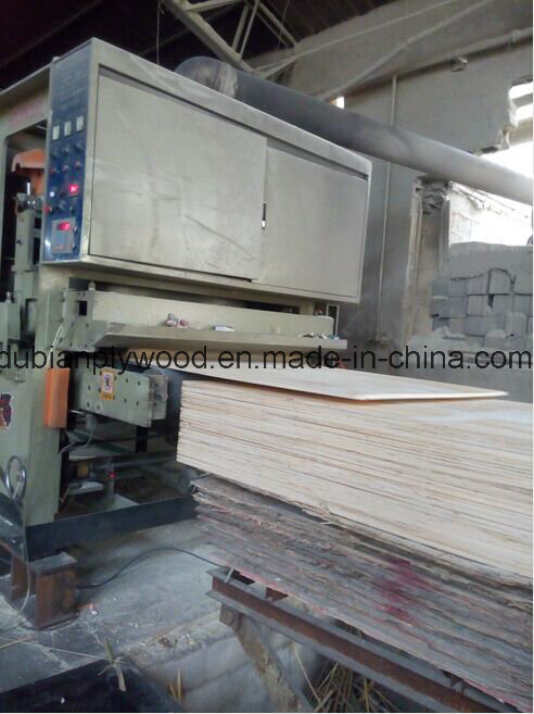 Plywood/Commercial Plywood/Common Plywood/Birch Face Plywood/ Pine Wood Produts/ Okoume F/B Plywood