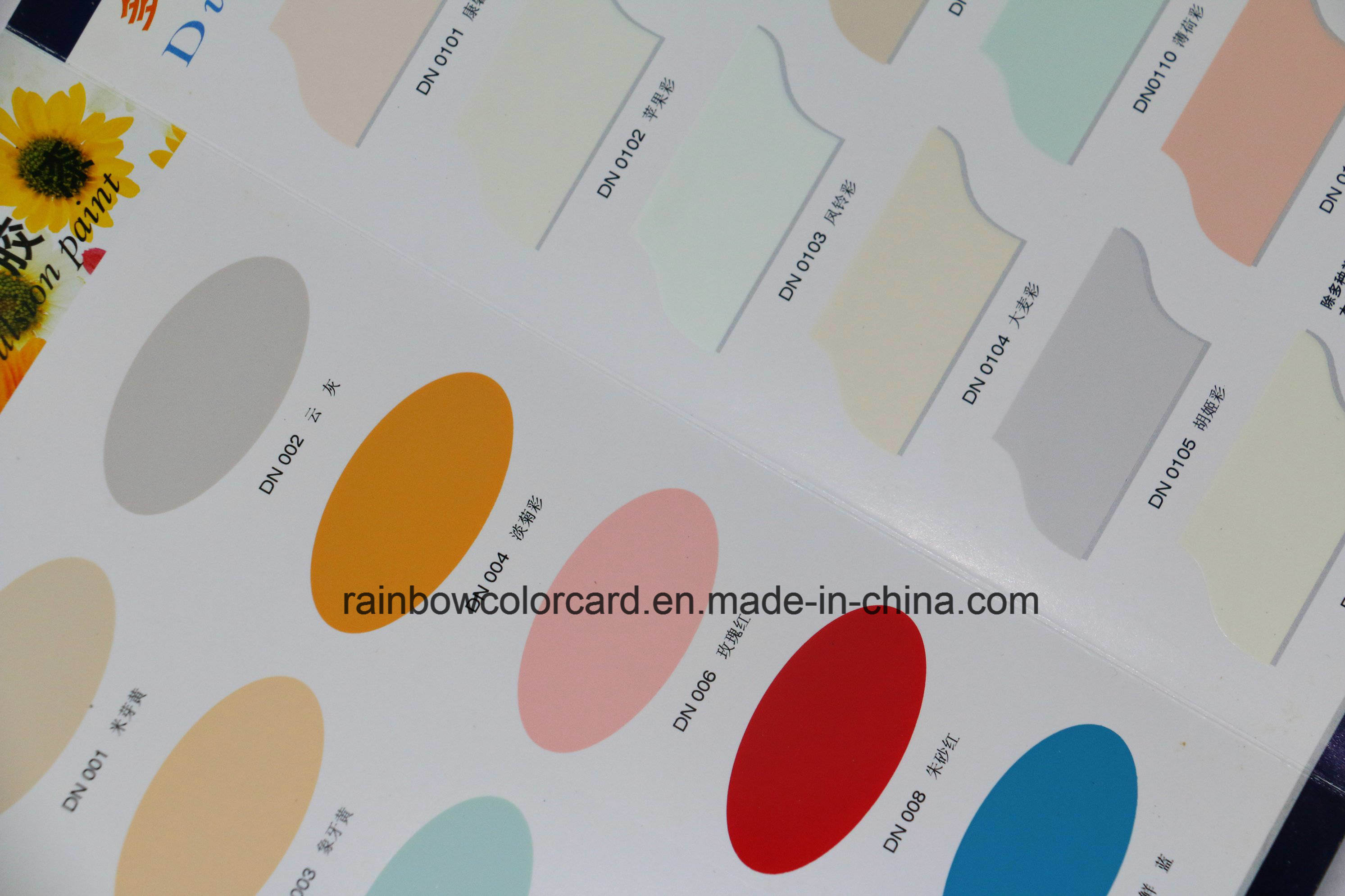 Various Emulsion Paint Colour Card Printing Service