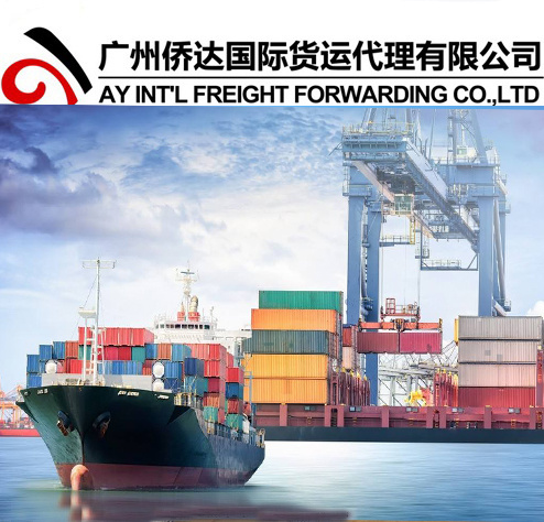 [Hot Item] Sea Freight / Ocean Freight/Sea Cargo Shipping From China to  Felixstowe UK
