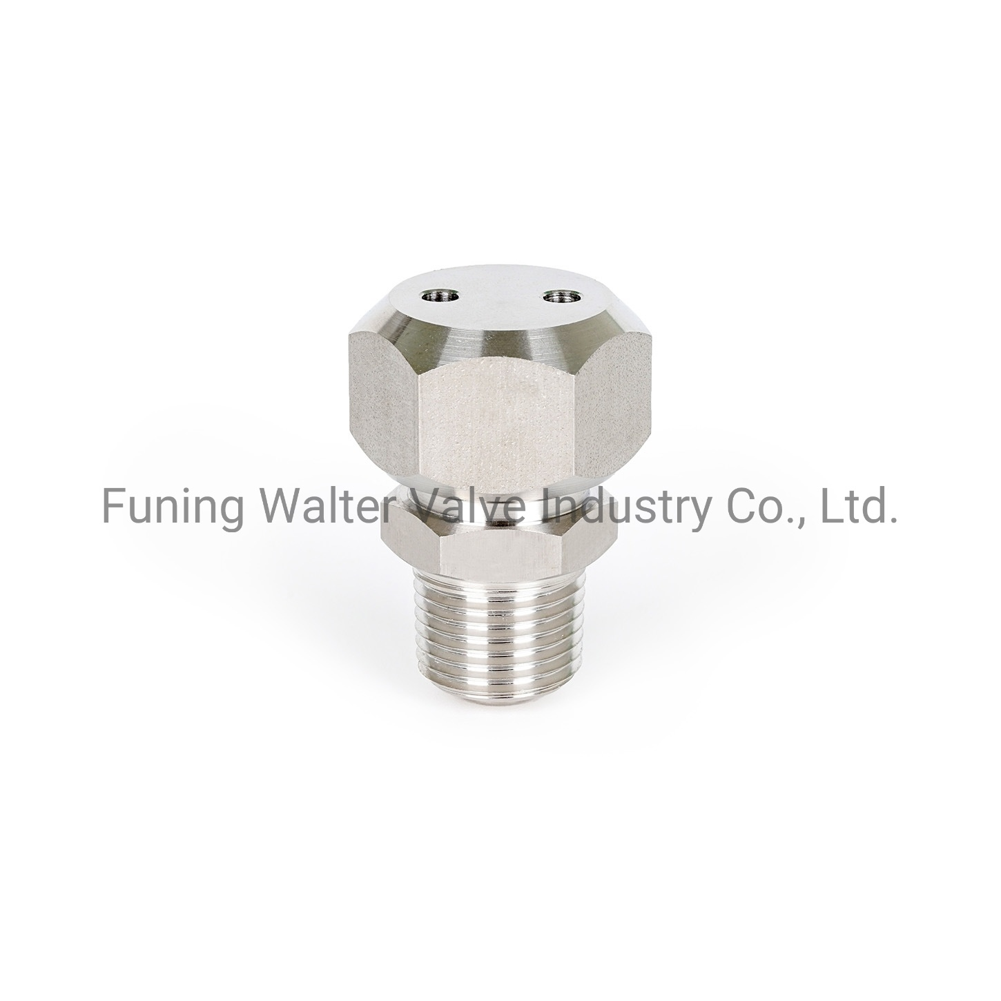 China America Double Seal Stainless Valve Grease Vent Cup China Valve Grease Valve Fitting
